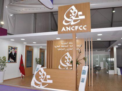 ANCFCC – SIAM 2019